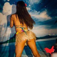 Imogen Hula Girl Hawaiian Luau